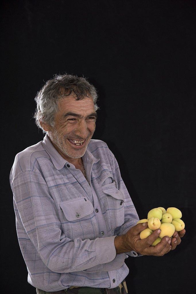 armenia - the apricot